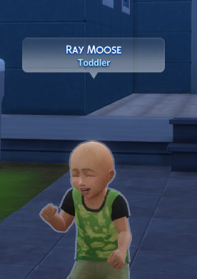 i am ray the moose